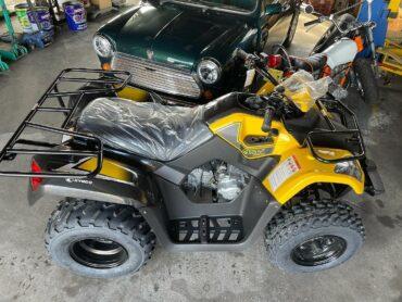 ATV 4輪バギー納車!